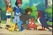 Pokémon en français saison 7 episodez 42 Des Chapignon plutôt grognons