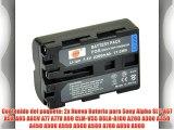 DSTE? 2x NP-FM500H Li-ion Bater?a para Sony a200 a300 a350 a700 Alpha a58 Alpha a99 DSLR-A100
