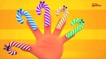 Lollipop Finger Family Poem - Nursery Rhyme Song For Kids