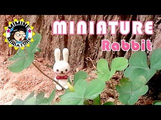 미니어쳐 토끼 만들기 Miniature - Rabbit