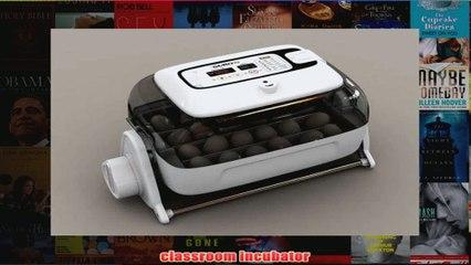 BEST  Digital Egg Incubator Rcom 20 Suro Chicken or Reptile Incubator REVIEW
