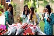 Vasl-e-Yar Episode 19 Top Pak Drama