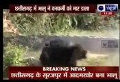 (video)bear attack video Bear Kills Man Wild Bear attack on Forest Guard Dead bear attack