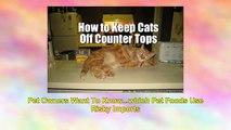 Petsumer Report Pet Food Ratings And Reviews