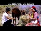 Sadhai Herxu Ma Timro Gau Tira | Ajay Thapa & Radhika Hamal | Dhital Films