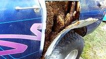 L'étonnante découverte d'un homme voulait faire réparer sa vieille voiture