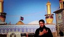 Mir Hasan Mir - Mir Hasan Mir Noha 2014 - Fatimah (as) kai dono pisar - Dailymotion