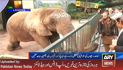 ARY News Headlines 14 January 2016, Public Views about Lahore Zoo
