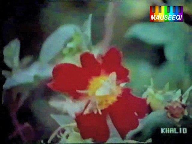 Khoyay Ho Na Janay Tum Kahan - Dooriyan - Original DvD Nayyara Noor Vol. 1