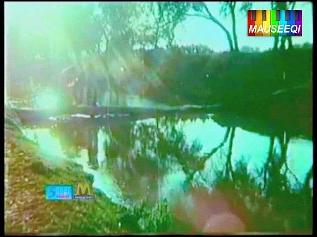 Ho Meray Sang Chala Ik (with Akhlaq Ahmed) Sharafat - Original DvD Nayyara Noor Vol. 1