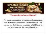 crested gecko manual+crested gecko secret manual reviews