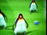 Image de 'Balack deguisé en pinguin qui marque une bicyclette'