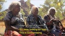 MODULE FIFO 2016 sur Polynésie 1ère n°16_Entre terre et mer