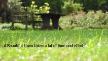 Vista Turf Lawn & Pest – A Lawn Care Company That Puts Their Customers First