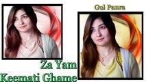 Gul Panra - Za Yam Keemati Ghame