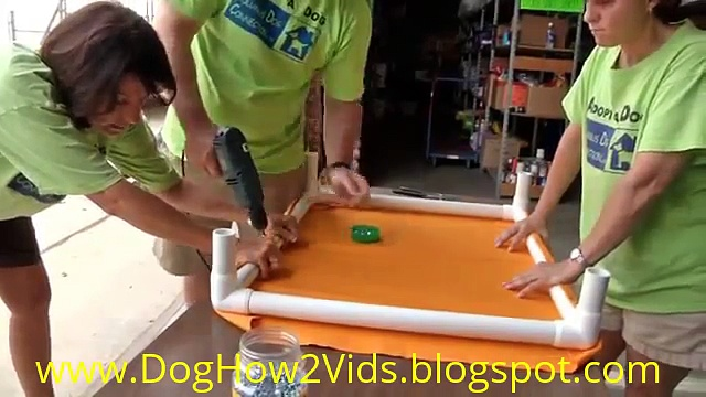 How to Make an Elevated Dog Bed |Dog How2 Vids|