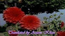 Ay Phoolon ki rani Hindi English Subtitles Full Song HD