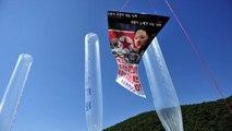 Kuzey Kore'den Tuvalet Kağıdı ve İzmarit Yüklü Propaganda Balonları