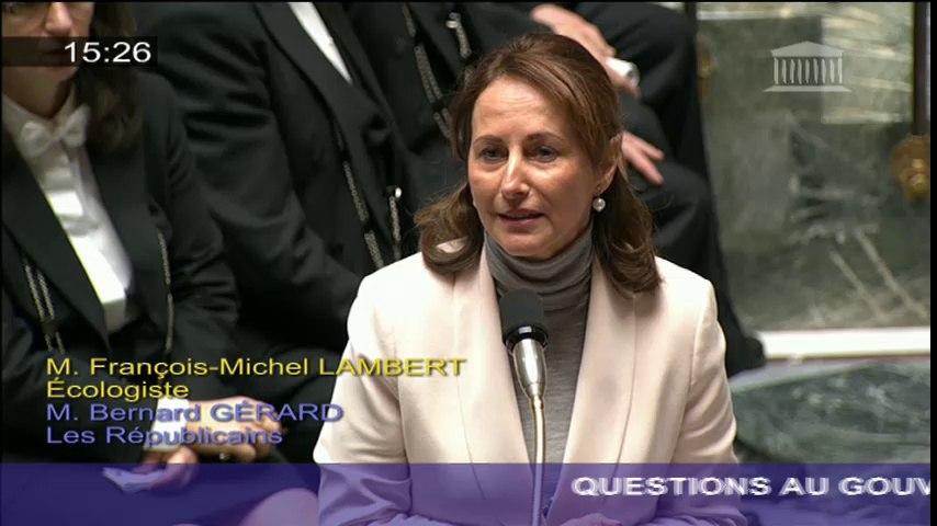 Pesticides : S. Royal répond à une question au Gouvernement