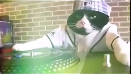 Kitty is DJing WOW!!!