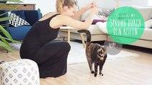 13 Katzen Tricks: Bärbels Clickertraining Kunststücke!