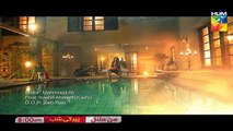 Mann Mayal OST HUM TV Drama , Mann Mayal Title Song