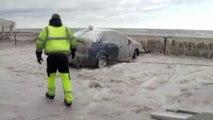 Failed Parking A Man Parked Failed || AVTO BAN