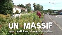 Les massifs sans pesticides et sans entretien : trucs & astuces des communes engagées dans la démarche Terre Saine communes sans pesticides