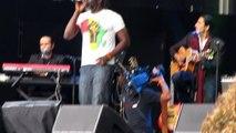 Reggae avec Tiken Jah Fakoly au Concert Pour l'Egalité à Paris sur TVIDF.