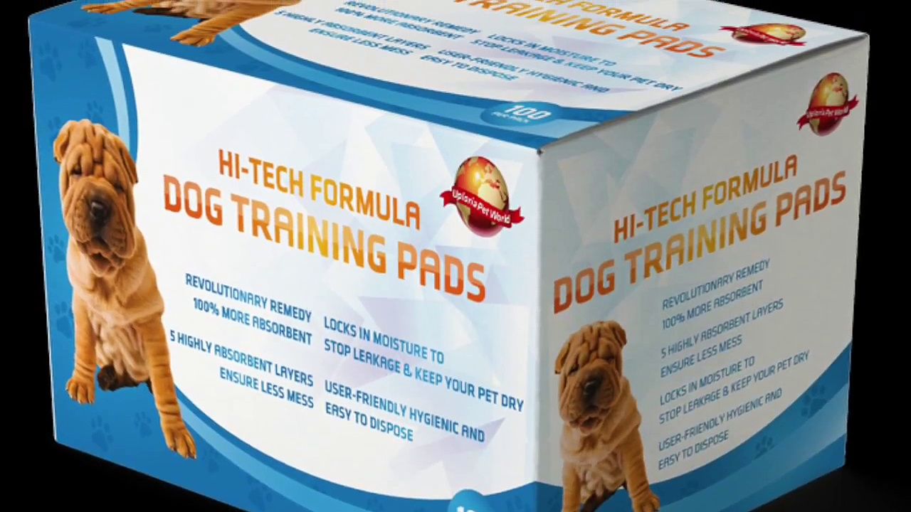 Puppy Potty Training Valuable Tips