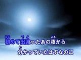 情熱の花 (カラオケ) / EXILE
