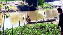 Toàn cảnh dỡ chà bắt cá ở miền tây Nam Bộ