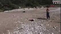 Baby's best friend, Heroic dog saves young child by lying in its way to stop it crawling into sea.