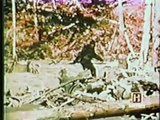 IN SEARCH OF - BIGFOOT - Leonard Nimoy - Discovery Paranormal Supernatural (full documentary)