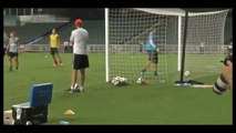 Fantástico gol de Zlatan Ibrahimovic | Fantastic goal of Zlatan Ibrahimovic