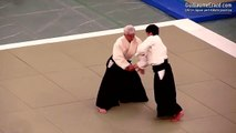 Aikido - Ueshiba Moriteru Doshu - 51st All Japan Aikido Demonstration 2013