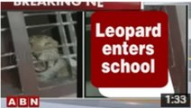 Latest News - Leopard enters school premises in Karnataka, 3 injured (23-07-2015)