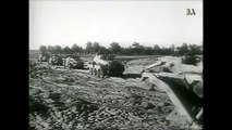WW2 footage - German forces in motion - SdKfz222,223,232,Ju87,Panther,StuG İ,Schwimmwagen