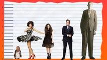 How Tall Is Marina Diamandis of Marina and The Diamonds? - Height Comparison!