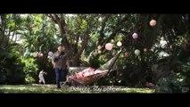 Un Novato en Apuros 2 – Official Tráiler #2 Subtitulado Español [HD]