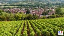 La douane au service des entreprises viti-vinicoles