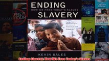 Download PDF  Ending Slavery How We Free Todays Slaves FULL FREE