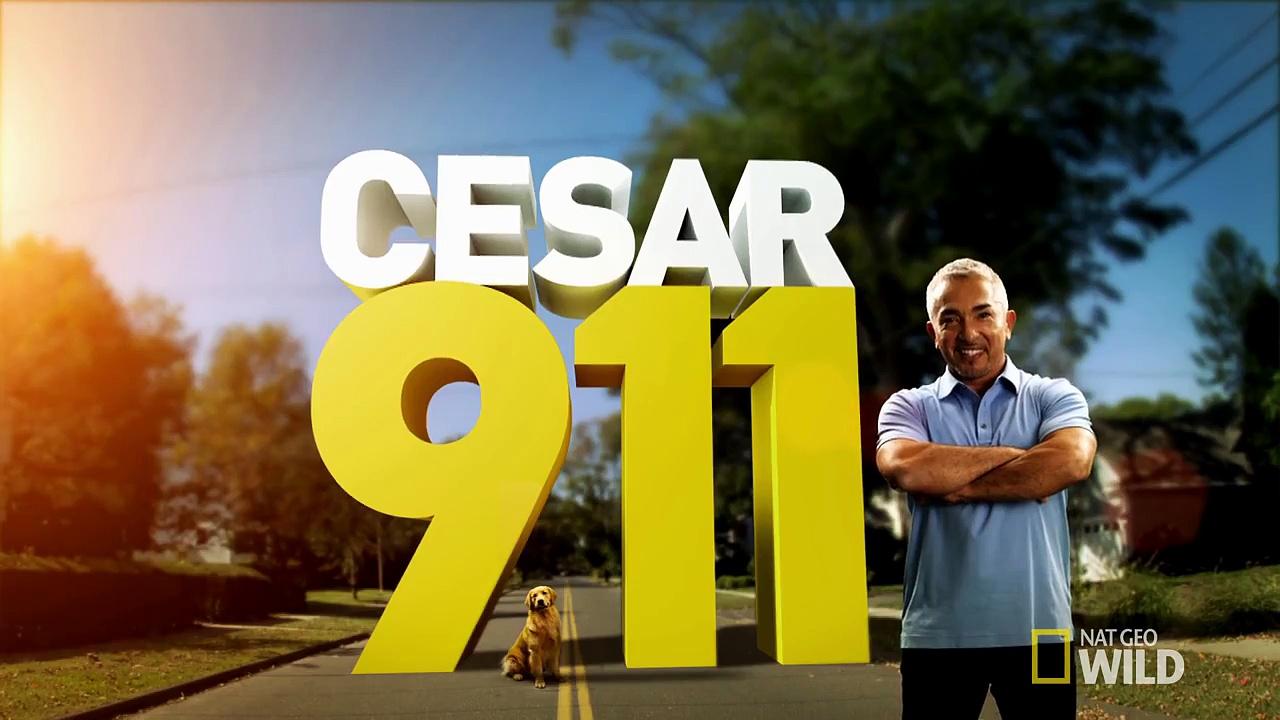 Cesar 911: Case File: Beau
