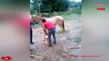 Funny Videos 2016 Funny Fails Compilation 2016 February Ultimate Fails Compilation 2016 COUB 2016 (FULL HD)