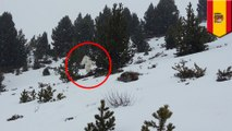 Video: yeti caught on camera in Pyrenees Mountains of Spain