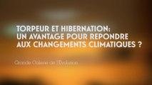 Torpeur et hibernation : un avantage pour répondre aux changements climatiques ? (Changements climatiques et biodiversité 3/5)