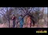 Haho ho ho  so very funny videos LOL | Funny Or Die | Funny Videos, Funny Video Clips, Funny Pics