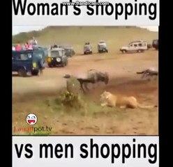Animal king Lion