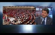 """Pierre Lellouche: """"On a réinventé la roue, la déchéance de nationalité existe déjà dans notre droit"""""""