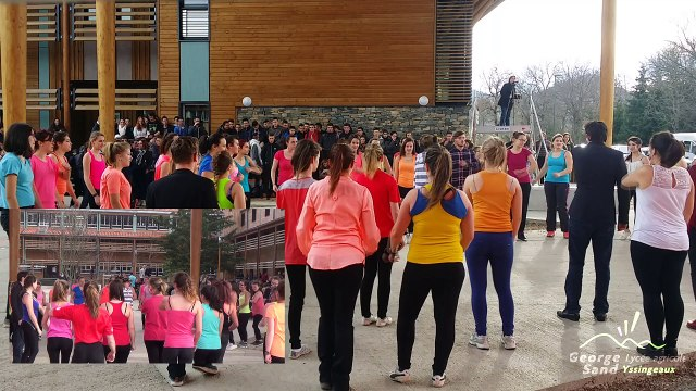 Flashmob UNSS Euro 2016 Lycée Yssingeaux